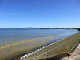 1435 Harbor City Boulevard - Photo 9