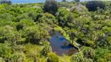 6555 Tropical Trail - Photo 3