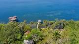 6555 Tropical Trail - Photo 4