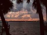 845 Tropical - Photo 59