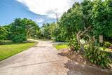 845 Tropical - Photo 7