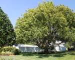 3305 Horse Trail Court - Photo 49