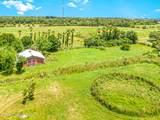 2255 Tropical Trail - Photo 6