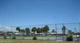 2329 Coconut Palm Drive - Photo 44