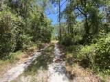 5025 Panther Lane - Photo 4