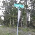 243 Dobbins Road - Photo 3
