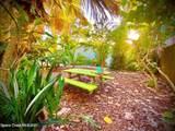 411 Audubon Drive - Photo 14