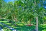 463 Hollow Glen Drive - Photo 24