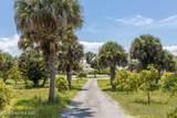 6187 Tropical Trail - Photo 74