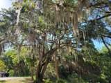 6187 Tropical Trail - Photo 91