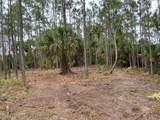 3230 Pheasant Trail - Photo 9