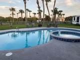 5405 Fishtail Palm Avenue - Photo 2