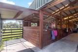 5405 Fishtail Palm Avenue - Photo 9