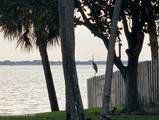 242 River Walk Drive - Photo 59