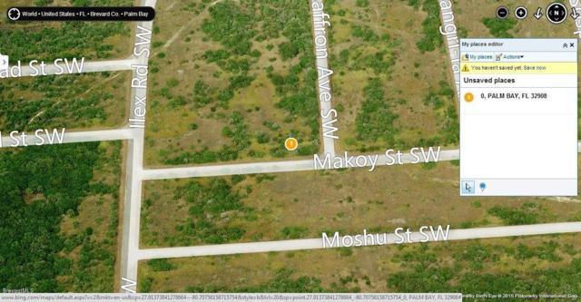 0 00000 Makow And Saffron Corner Avenue #51, Palm Bay, FL 32908 (MLS #720444) :: Coldwell Banker Realty