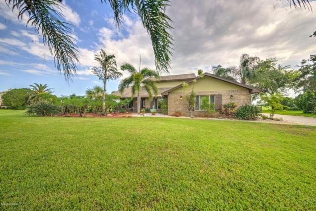 535 Pauma Valley Court, Melbourne, FL 32940 (MLS #793306) :: Better Homes and Gardens Real Estate Star