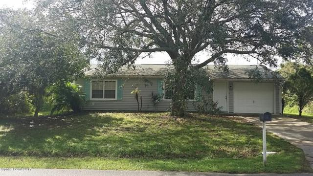 800 Merrimac Street SE, Palm Bay, FL 32909 (MLS #794185) :: Better Homes and Gardens Real Estate Star