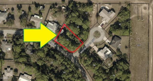 0000 White Cap & Hayworth Court NW, Palm Bay, FL 32907 (MLS #801387) :: Armel Real Estate