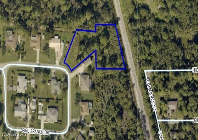 2890 Pine Branch Drive, Melbourne, FL 32940 (MLS #804802) :: Better Homes and Gardens Real Estate Star