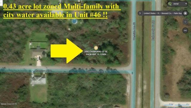 1685 Chamorro Street SE, Palm Bay, FL 32909 (MLS #805612) :: Better Homes and Gardens Real Estate Star