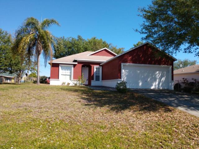 913 Crocus Street NE, Palm Bay, FL 32907 (MLS #808203) :: Premium Properties Real Estate Services