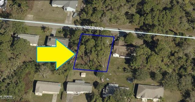 800 Andrew Street SE, Palm Bay, FL 32909 (MLS #810802) :: Pamela Myers Realty