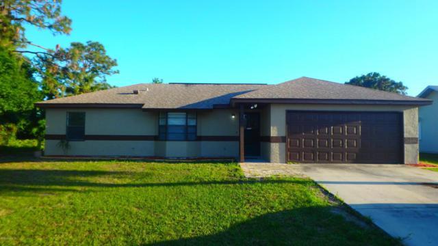 2060 Advana Street NE, Palm Bay, FL 32905 (MLS #811227) :: Better Homes and Gardens Real Estate Star