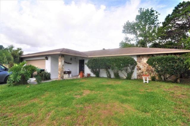 714 SE Corinne Avenue SE, Palm Bay, FL 32909 (MLS #811507) :: Premium Properties Real Estate Services