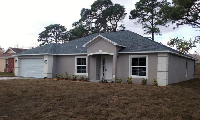 491 Alesio Avenue SE, Palm Bay, FL 32909 (MLS #814331) :: Pamela Myers Realty