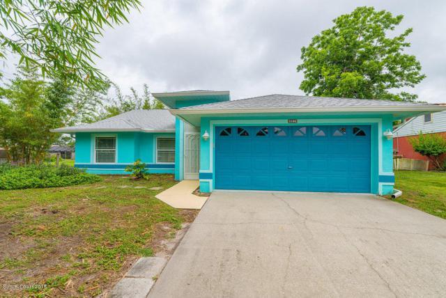 651 Binney Street NE, Palm Bay, FL 32907 (MLS #814332) :: Pamela Myers Realty