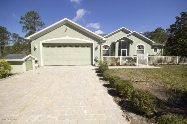 1400 Flatwoods Road, Mims, FL 32754 (MLS #817937) :: Pamela Myers Realty