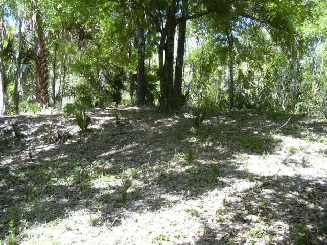 Xxx Deerwood Trail, Melbourne, FL 32934 (MLS #819238) :: Pamela Myers Realty