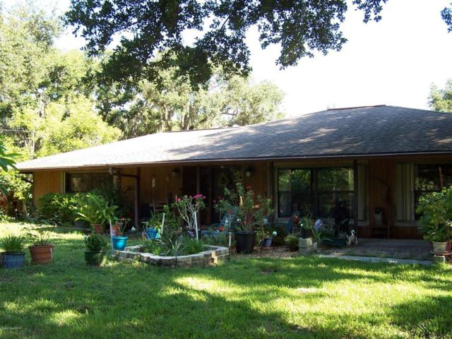 1240 Pine Island Road, Merritt Island, FL 32953 (MLS #819241) :: Pamela Myers Realty