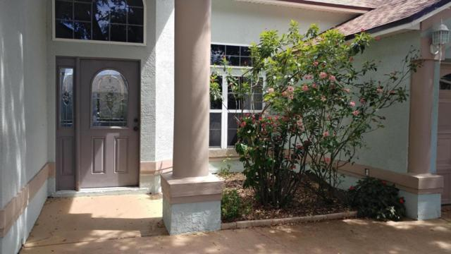 581 Sunset Lakes Drive, Merritt Island, FL 32953 (MLS #819533) :: Premium Properties Real Estate Services