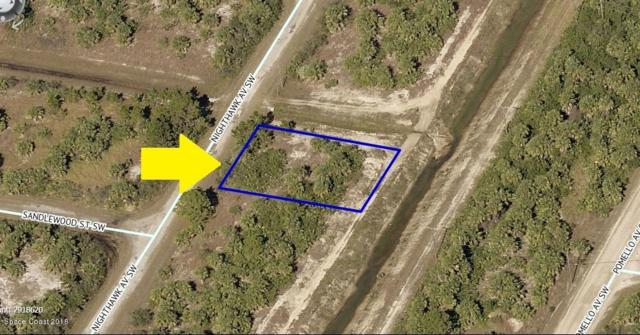 3167 Nighthawk Avenue SW, Palm Bay, FL 32908 (#819600) :: Atlantic Shores