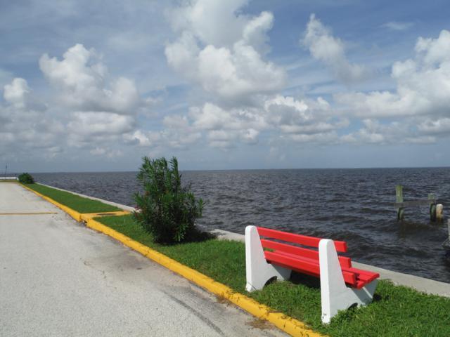 190 E Olmstead Drive D2, Titusville, FL 32780 (MLS #823748) :: Pamela Myers Realty