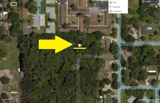 00000 No Access Yucca Drive Drive, Cocoa, FL 32922 (MLS #824244) :: Blue Marlin Real Estate