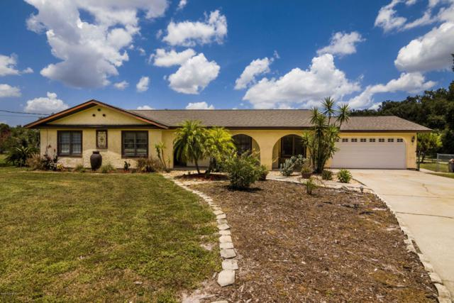 3410 Fox Lake Road, Titusville, FL 32780 (MLS #825116) :: Pamela Myers Realty