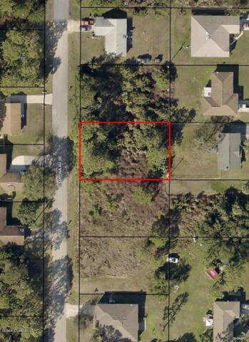 803 Campina Avenue SE, Palm Bay, FL 32909 (#825126) :: Atlantic Shores