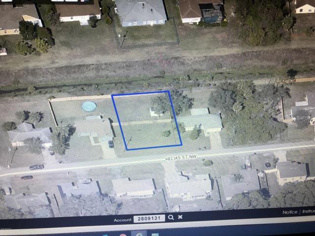 1363 NW Helias Street NW, Palm Bay, FL 32907 (MLS #825281) :: Pamela Myers Realty