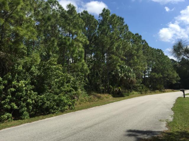 1711 NW Hydrangea Road, Palm Bay, FL 32907 (MLS #825298) :: Pamela Myers Realty