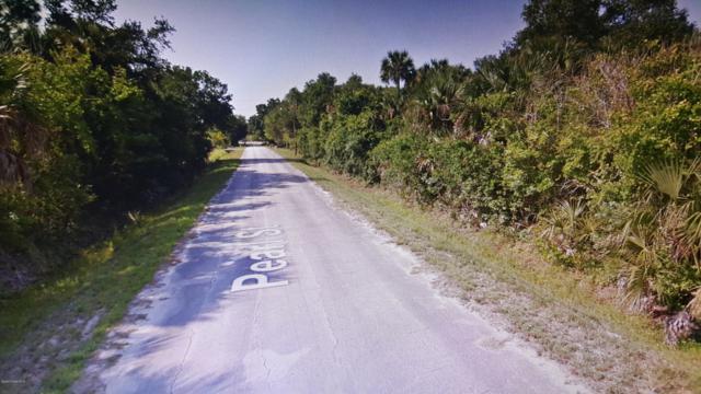 11 Pearl Street, Cocoa, FL 32926 (MLS #825465) :: Premium Properties Real Estate Services