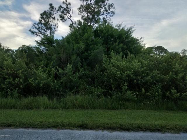 743 Coconut Street SE, Palm Bay, FL 32909 (MLS #825675) :: Armel Real Estate