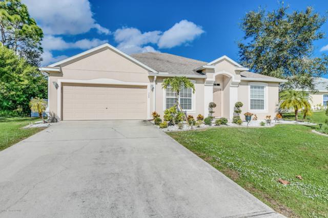 359 Brescia Street NE, Palm Bay, FL 32907 (#829836) :: Atlantic Shores