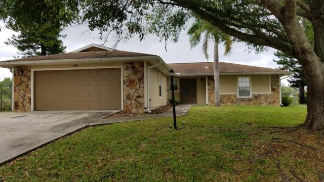 691 Grandeur Street SE, Palm Bay, FL 32909 (MLS #829926) :: Premium Properties Real Estate Services