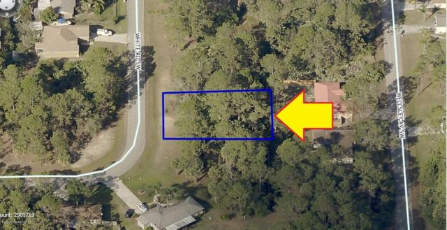 147 White Road SW, Palm Bay, FL 32908 (MLS #833504) :: Blue Marlin Real Estate
