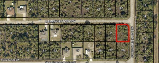 000 Lambright Street, Palm Bay, FL 32908 (MLS #834606) :: Premium Properties Real Estate Services