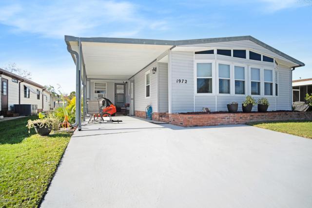 1972 Coco Plum Street NE, Palm Bay, FL 32905 (MLS #834790) :: Coral C's Realty LLC