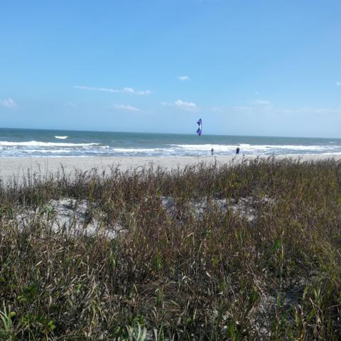 3620 Ocean Beach Boulevard #36, Cocoa Beach, FL 32931 (MLS #837162) :: Pamela Myers Realty