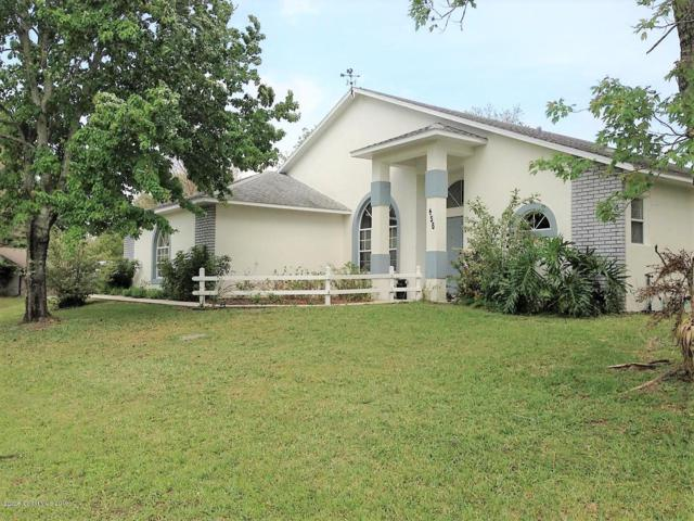 456 Krefeld Road NW, Palm Bay, FL 32907 (MLS #837348) :: Pamela Myers Realty